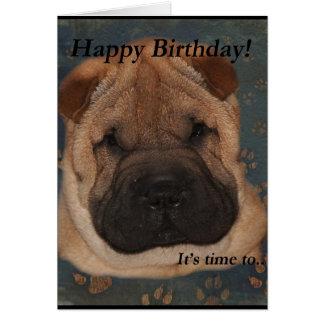 Shar Peiの誕生日取得足 カード