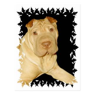 Shar Pei犬の郵便はがき ポストカード