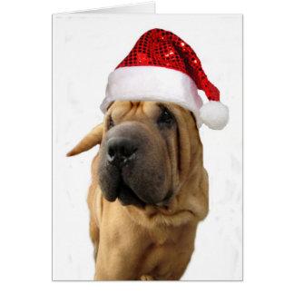 Shar Pei犬 カード