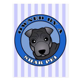Shar Pei -青いコート著所有される-青 ポストカード