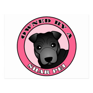Shar Pei -黒いコート著所有される-ピンク ポストカード