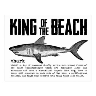Shark Definitionヴィンテージのビーチ王 ポストカード