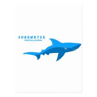 Sharkwaterのフライヤ5 ポストカード
