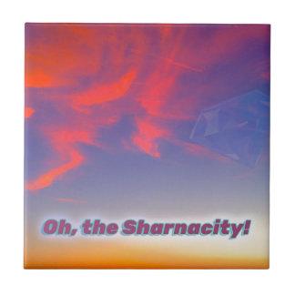 Sharnacity タイル