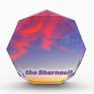 Sharnacity 表彰盾