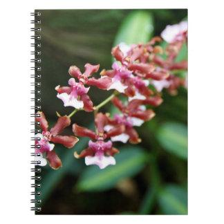Sharryのベビーのノート ノートブック
