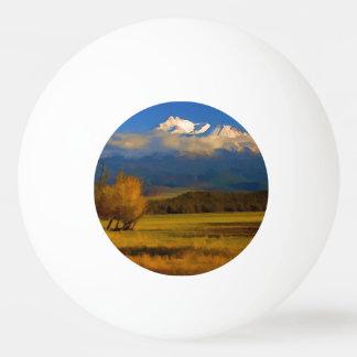 SHASTAの谷の紅葉 卓球ボール
