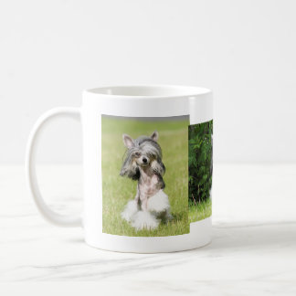 Sheebaの指すこと コーヒーマグカップ