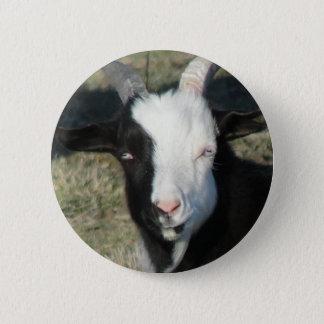 Sheltonのヤギの農場 5.7cm 丸型バッジ