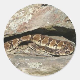 Shenandoahの国立公園のガラガラヘビ ラウンドシール