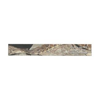 Shenandoahの国立公園のガラガラヘビ ラップアラウンドラベル