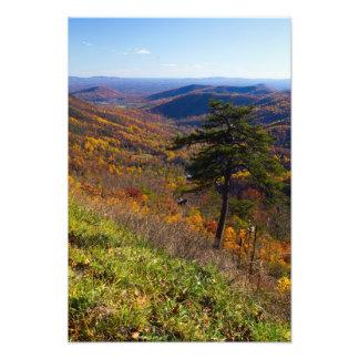 Shenandoahの国立公園、ヴァージニアの秋 フォトプリント