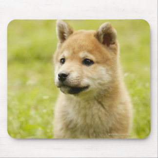 Shibaケンの子犬 マウスパッド