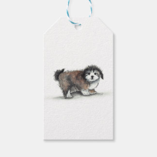 Shihtzuの小犬、ペット ギフトタグ