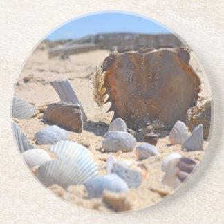 Shirleyテイラー著ビーチの貝殻 コースター
