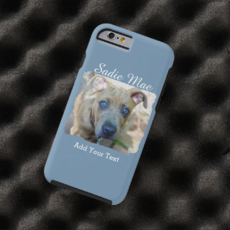Shirleyテイラー著ピット・ブルのBrindle子犬 ケース