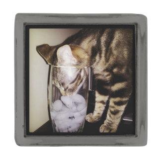 Shirleyテイラー著飲み物の盗人猫 ガンメタルラペルピン