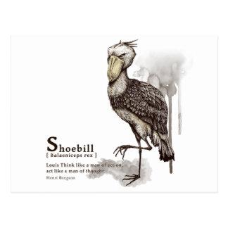 shoebill - mocha ポストカード