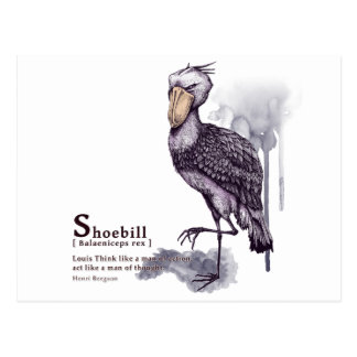 shoebill - plum 葉書き