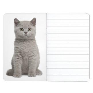 Shorthairのイギリスの子ネコ(10週古い) 2 ポケットジャーナル