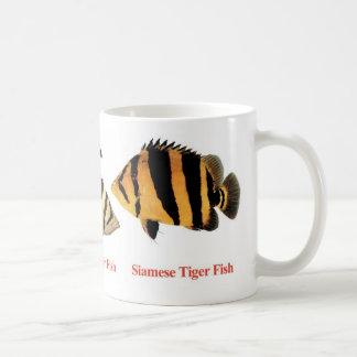 Siamese Tiger fishのマグカップ コーヒーマグカップ