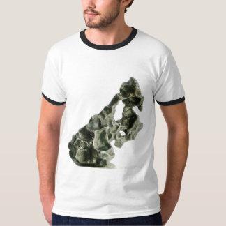 Sikhote-Alinの隕石 Tシャツ
