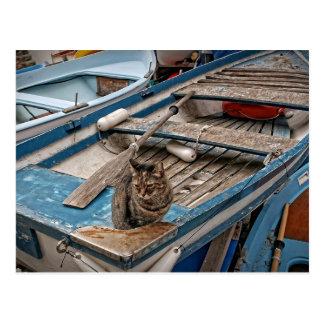 Sinbad船員猫の郵便はがき ポストカード