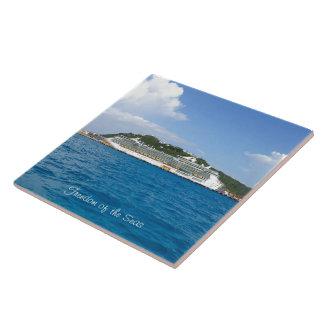 Sint Maartenのカスタムの自由 タイル