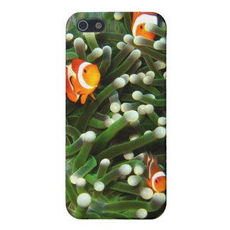 Sipadanの珊瑚の庭のピエロの魚 iPhone SE/5/5sケース