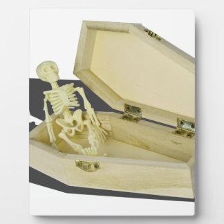 SkeletoninCoffin070315 フォトプラーク
