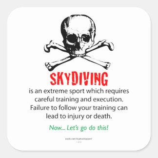 Skydivingの訓練 スクエアシール