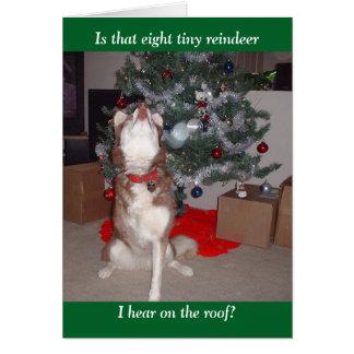 Skyeのメリークリスマス カード
