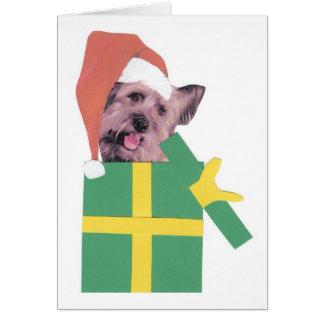 Skyeテリアの緑箱 グリーティングカード