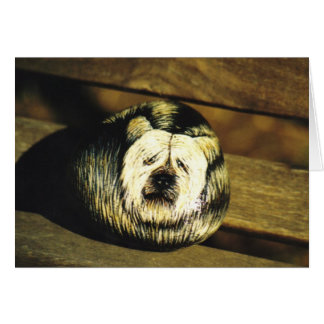 """SkyeTerrier""犬の石カード グリーティングカード"