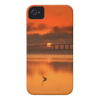 Skyway橋 Case-Mate iPhone 4 ケース