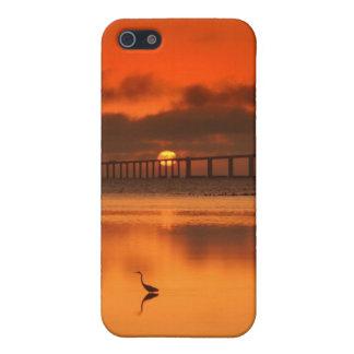 Skyway橋 iPhone 5 ケース