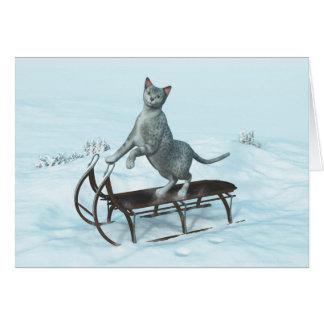 sleddingの猫 カード