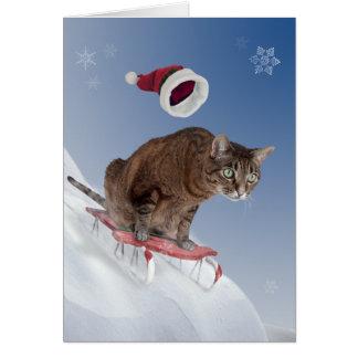 Sledding猫のクリスマスカード カード