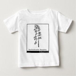 Smalltoothcombia Domestica. ベビーTシャツ