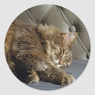 Smoochieの女の子の子猫(#1) ラウンドシール