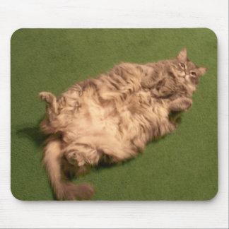 Smoochieの女の子の毎日の子猫のヨガ マウスパッド