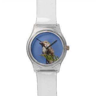 SnapDaddy著ハチドリ 腕時計