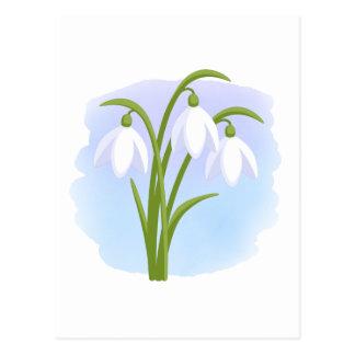 Snowdrops -水彩画の青の春の花 ポストカード