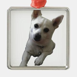 Snowie子犬 メタルオーナメント