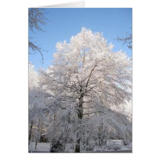 Snowyのカシ カード