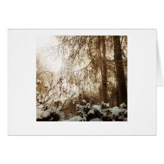 Snowyのカラマツ カード