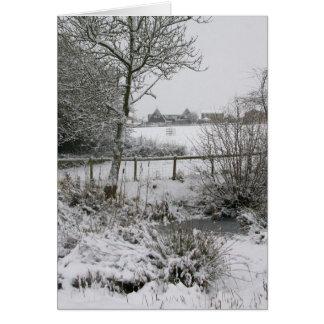 Snowyのコーナー カード