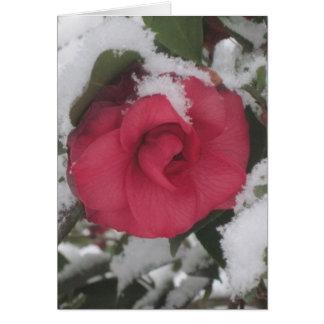 Snowyのツバキ カード