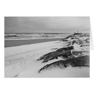 Snowyのビーチ カード