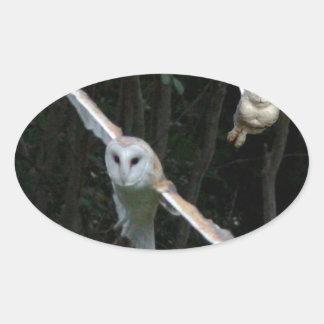 Snowyのフクロウ及び飛行中のメンフクロウ 楕円形シール